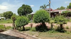 Yard, Vegetation, Plant, Bush, Building, Countryside, Shelter, Rural, Garden, Arbour, Tree, Porch, Backyard, Patio, Housing