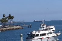 Vehicle, Boat, Yacht, Ferry, Bird, Aircraft, Airplane, Water, Waterfront, Harbor, Pier, Port, Dock, Military, Sea