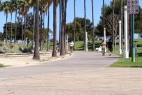 Path, Grass, Plant, Lawn, Park, Sports, Skateboard, Sport, Pavement, Sidewalk, Road, City, Building, Street, Town
