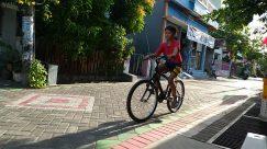 Bicycle, Bike, Vehicle, Path, Wheel, Walkway, Pavement, Sidewalk, Building, Street, Town, City, Road, Riding Bicycle, Neighborhood