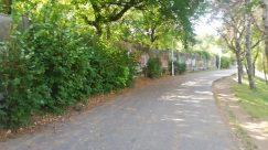 Building, Town, City, Road, Street, Path, Plant, Tree, Alleyway, Alley, Arbour, Garden, Vegetation, Yard, Grass