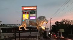 Dinosaur, Reptile, Automobile, Car, Vehicle, Lighting, Pump, Gas Station, Building, City, Town, T-Rex, Museum, Downtown, Billboard