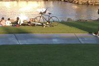 Bicycle, Bike, Vehicle, Grass, Plant, Wheel, Walking, People, Lawn, Park, Field, Spoke, Path, Sport, Sports