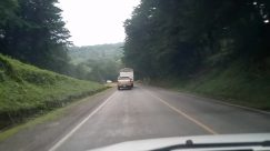 Road, Vehicle, Car, Automobile, Freeway, Highway, Truck, Plant, Vegetation, Bush, Wheel, Bus, Tree, Land, Forest