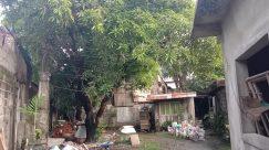 Rural, Countryside, Building, Shelter, Yard, Garden, Trash, Arbour, Plant, Backyard, Housing, Vegetation, Road, Patio, City