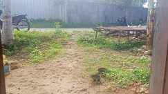 Yard, Wheel, Backyard, Wood, Vehicle, Motorcycle, Furniture, Ground, Soil, Plant, Bench, Plywood, Grass, Tree, Road